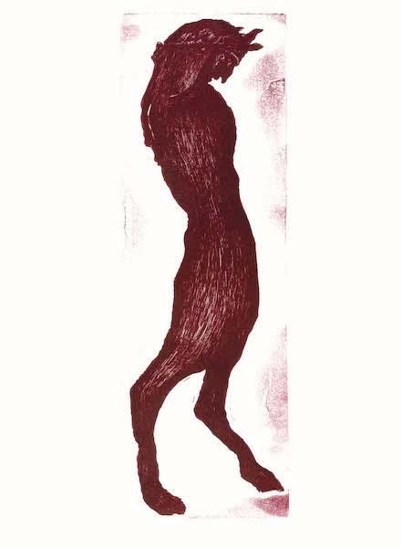 Gallo, Frontespizio